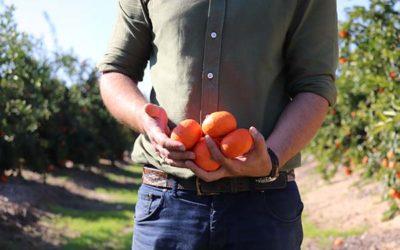 España se posiciona en la agricultura de alimentos ecológicos