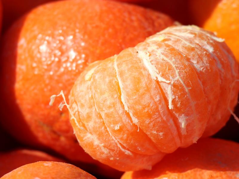 «El buen calibre de la mandarina Queen Selection tendrá una gran ventaja competitiva este año»